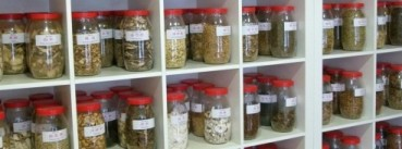 Bottles of Chinese Herbs used by the Clinic