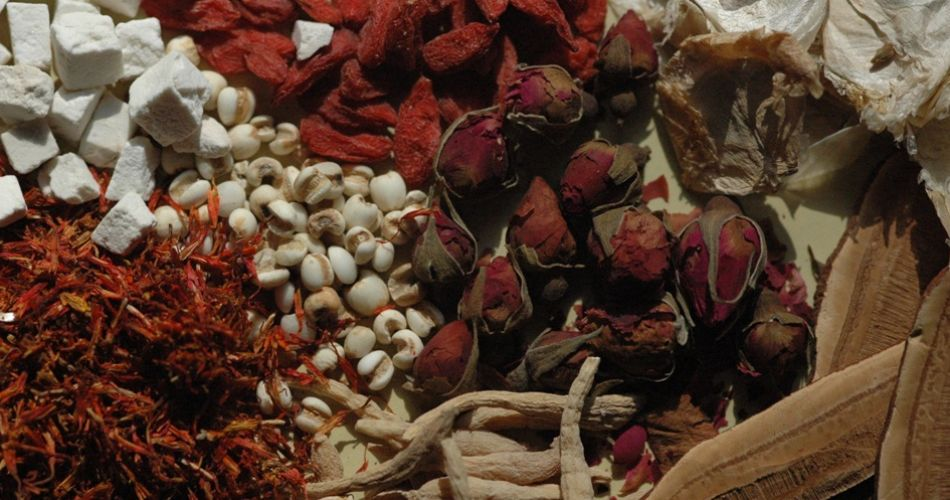 Selection of herbs used in Traditional Chinese Medicine
